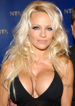 Pamela Anderson's boobs